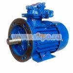 Электродвигатель взрывозащищенный ВАО-41-2 5