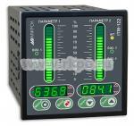 Двухканальный микропроцессорный индикатор ИТМ-122 - фото